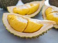 果物の王様ドリアンの匂い&味の正体とは? 食べる際の注意点も解説