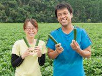 【佐賀】農業のイメージが変わる!? 肥沃な土壌&人の温かみが自慢。模擬経営や手厚い補助制度で就農を支援!