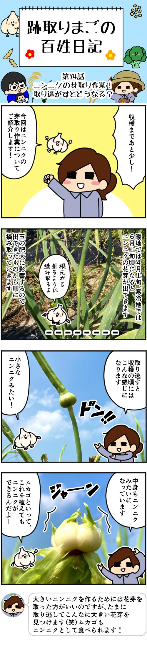 1 第74話本編