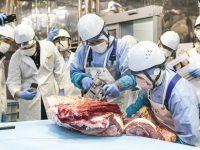 地域創生から海外展開まで多岐に広がるビジネスチャンス。日本発、グローバル人材を養成するお肉の学校とは?