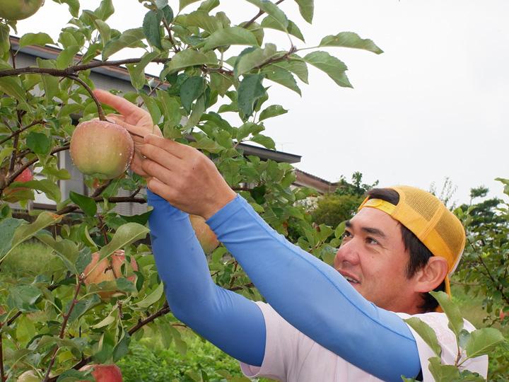 「あわてない、一休み」という願いを込めて奥様が名付けた『一休農園』で、作業をする島田さん