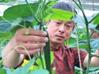 農業を楽しむことが成功への近道。福島県青年農業士が考える、これからの農業と担い手育成の課題解決とは