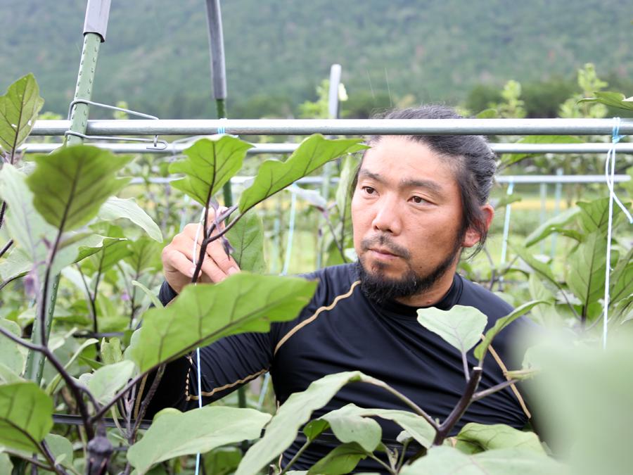 京都府農林水産部