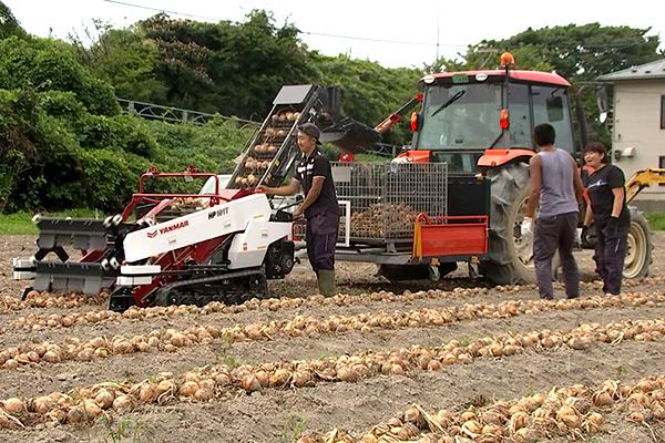 将来就農を検討している方から気軽に体験したい初心者の方まで大歓迎! 2泊3日のお気軽短期農業体験!