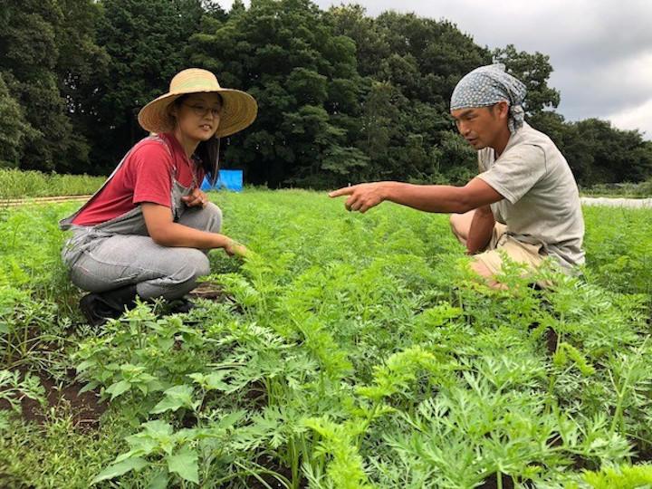 ニンジン畑で。作物の様子を2人で観察する