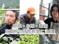 野菜・お茶・畜産―京都府では研修制度を整備して、担い手育成を強化