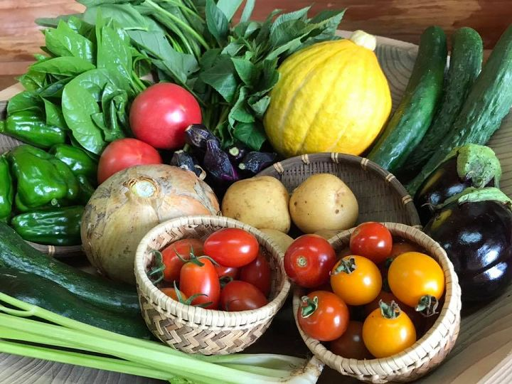 野菜セットは小規模農家の起爆剤【ゼロからはじめる独立農家#14】