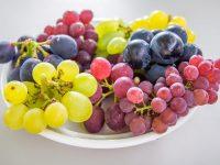 本当においしいブドウの品種ってどれ? ブドウマニアが21品種を食べてレビュー!