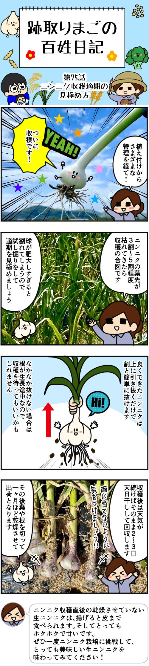 1 第75話本編