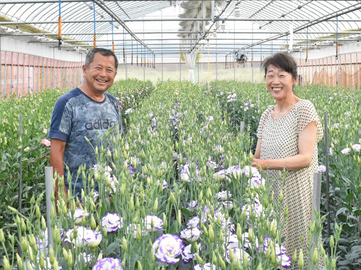 """トルコギキョウの一大産地を目指す 「花のまち・浪江町」で学ぶ、体験する """"稼げる"""" 農業"""
