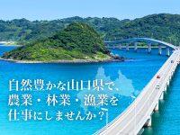 自然豊かな山口県で、農業・林業・漁業を仕事にしませんか?