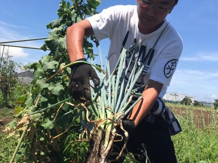 金融マンから農家サラリーマンへ こんな時代だからこそ「農業」を仕事に【畑と人材育成とvol.5】