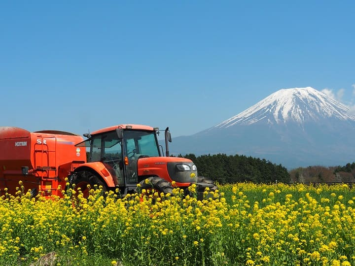 農場から見える富士山