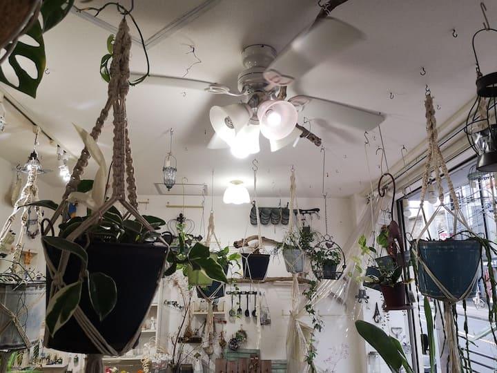 ガーデニングショップの天井に取り付けてあるファン