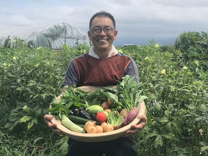 畑と野菜セット