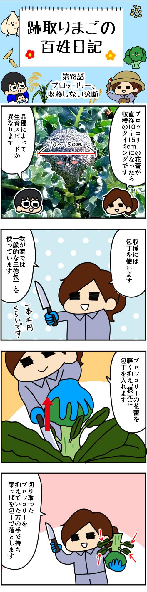 「跡取りまごの百姓日記」【第78話】_1枚目