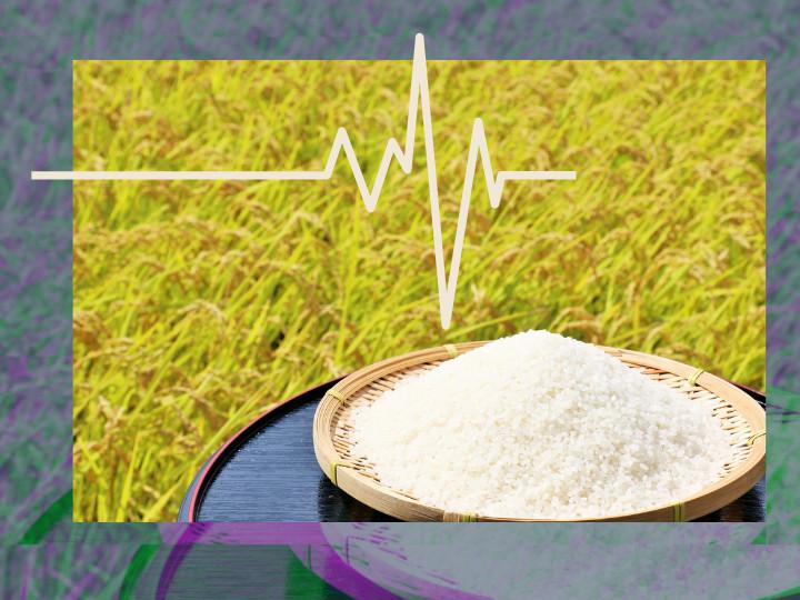米価低迷の時代に水田農業をどう考えるか