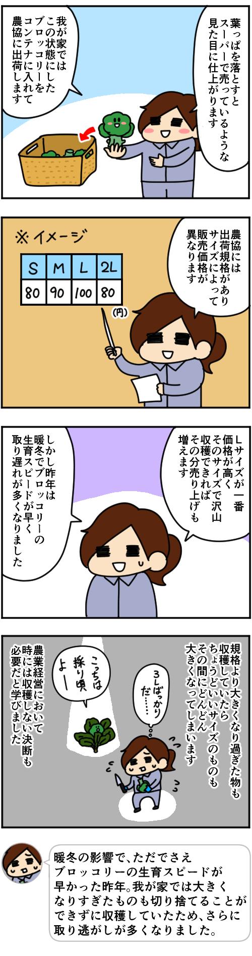 「跡取りまごの百姓日記」【第78話】_2枚目
