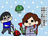 漫画「跡取りまごの百姓日記」【第77話】てんてこまいのブロッコリー管理