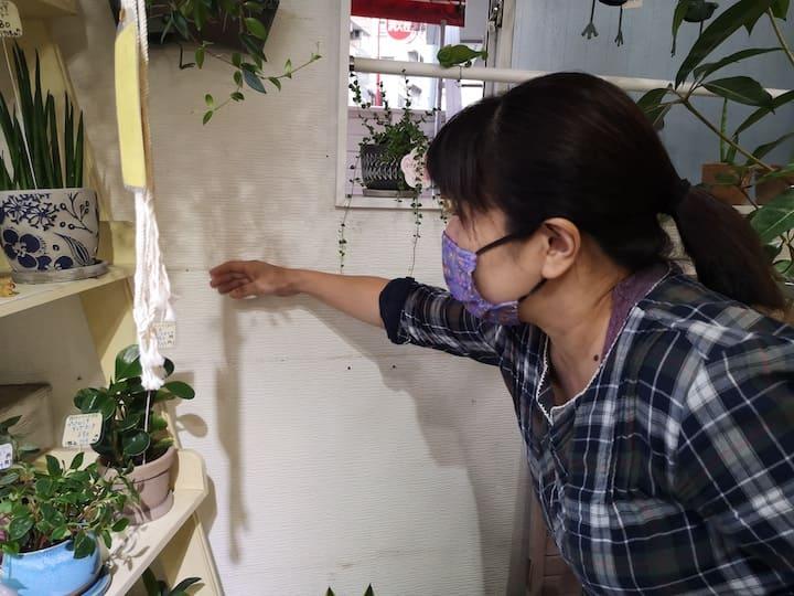 ガーデニングショップの壁際に植物棚