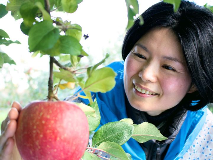 自身が栽培から収穫まで任せられたリンゴを見つめる陽子さん