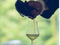 人生を変える奇跡の一滴。「八女茶伝統本玉露」の神髄と楽しみ方に迫る