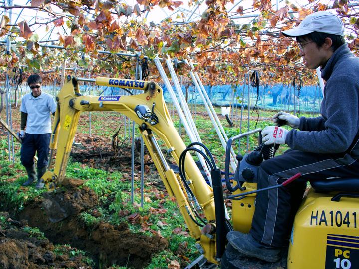 ブドウ畑の暗渠(あんきょ※1)作業を行う満さんと研修生の宮崎さん
