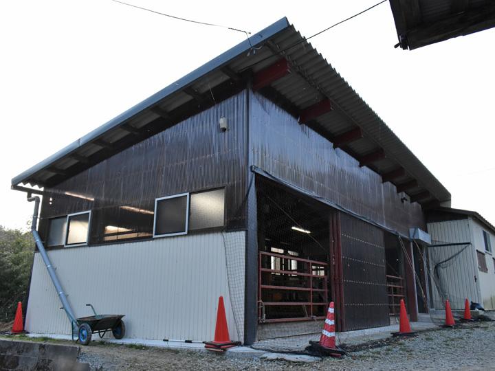 新築した子牛用の牛舎。葛尾村の鉄工業者も畜産の知識があるので使いやすい牛舎を造ってくれるそうです