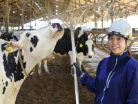 牛舎清掃は愛~牛舎をキレイに保つ仕組みとその効果の話~