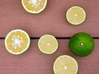 日本に30種類以上ある「香酸(こうさん)柑橘」 なぜ広まらない?目からウロコの使い方とは?