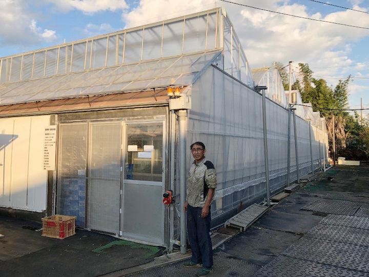 2017年春完成した環境制御型のハウス