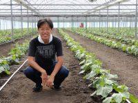 農業法人で「高知県一」の給与を払える理由 高給を支える契約栽培と多収