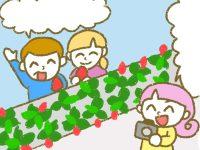 漫画「宮崎に移住した農家の嫁日記」【第143話】ビニールハウス内での撮影場所