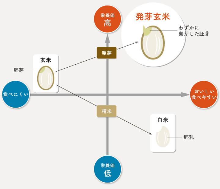 発芽玄米と玄米と白米の栄養価、食べやすさを表現した図