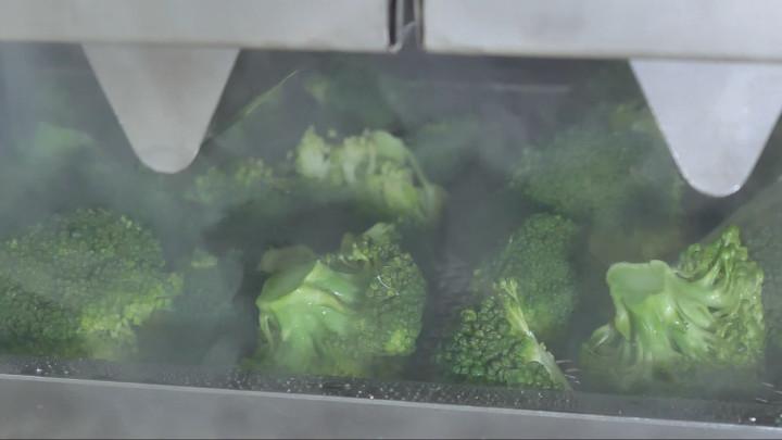 ブロッコリーを水蒸気で加熱