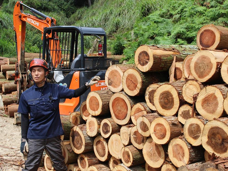 1/17(日)オンライン開催―女性新規就業者と語る山口県『林業への入門』講座