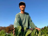 「貯金がどんどん減る」有機農家の窮地を救った野菜と販路とは