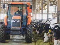 餌づくりは愛~こだわりの餌「TMR」で牛の健康を守る話~