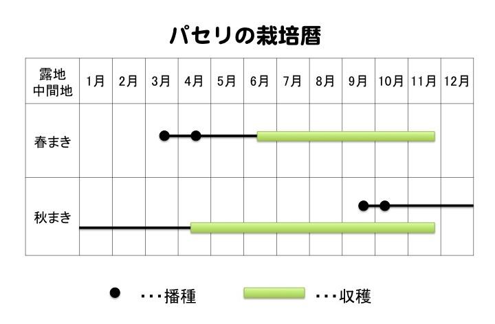 パセリの栽培暦
