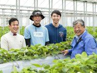 栽培管理がしやすく、アフターフォローも万全。肥料メーカーが考案した『ジャット式イチゴ高設栽培システム』の真価