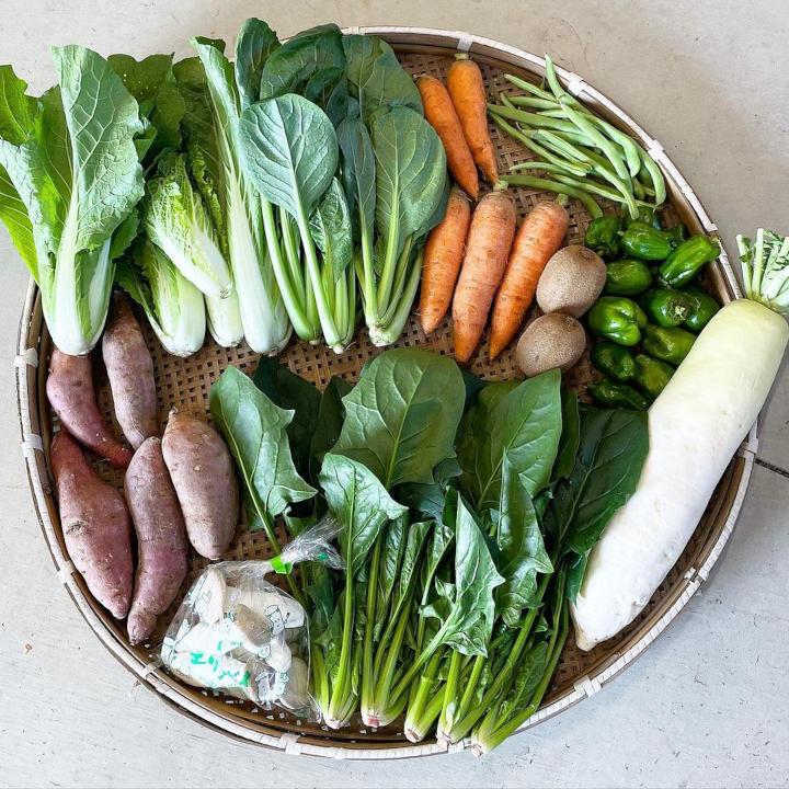野菜セットの一例2