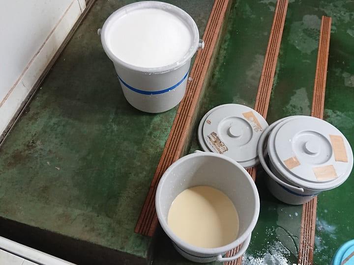 画像下が初乳。通常の生乳よりも黄みがかっている