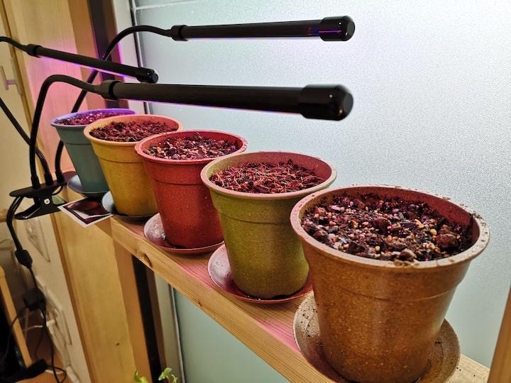 LEDをセットして野菜の栽培を準備