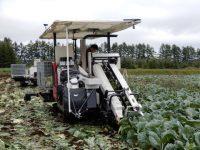 スマート農業時代、ロボット導入が求める作業体系の変革とは