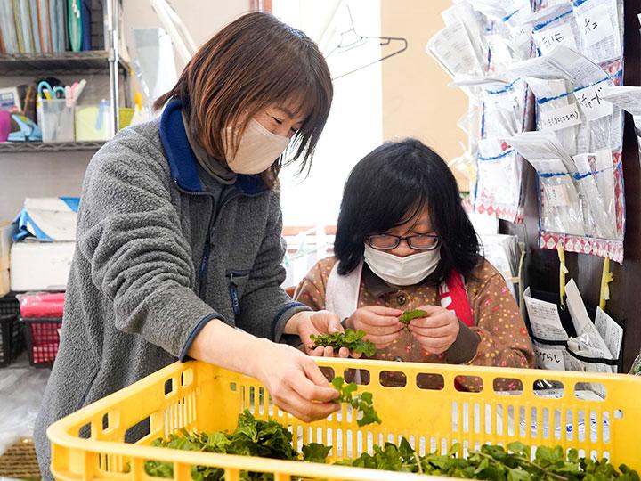 新たな働き手の可能性「農福連携」で必要なことは何か