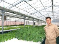 農業が好きで好きでたまらない、ソーラーシェアリングを利用したスマート農場を管理する21歳