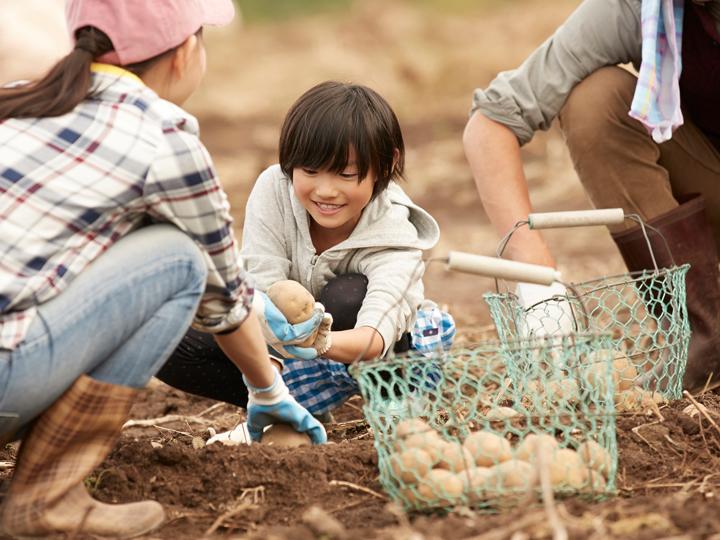 なぜ農業?農家になるためにしていることは? 農業を選んだ若者にインタビュー!