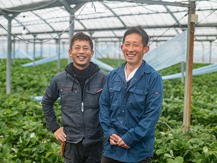 【動画付き】\新規就農者に人気/ 福岡の農業がアツイ!あまおう農家の魅力に迫る!