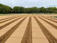 少量多品目農家の土づくりは意味がある? 「土づくりをしない」という選択