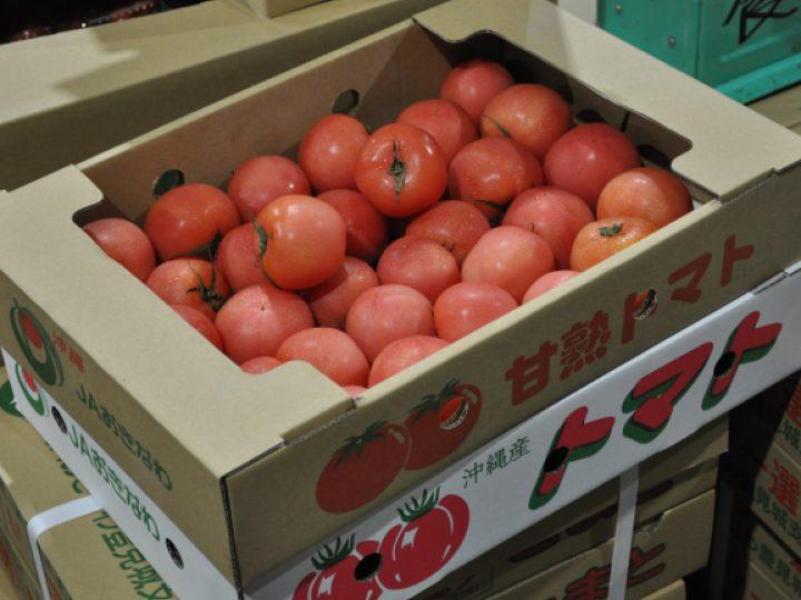 セリに潜入トマト